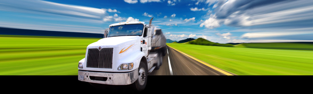 Shannon Trucking   Transportation and Storage Expert